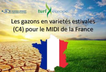 Les C4 pour la France